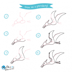 Pterodactyl Drawing Tutorial