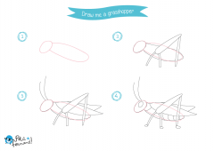 Learn How to Draw Insects