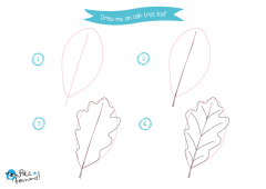 Learn How to Draw Tree Leaves