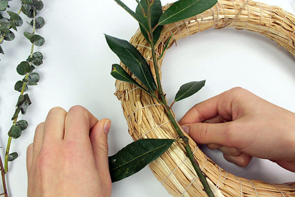 Follow a few steps to create this amazing decoration